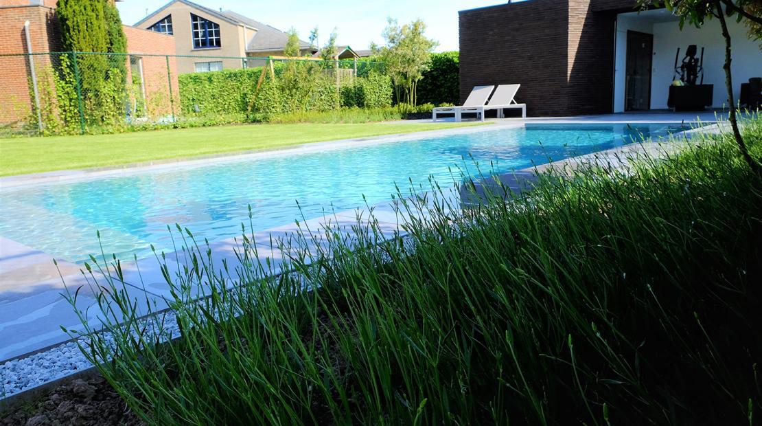 Een zwemvijver is een mooi stukje natuur in je tuin clautura